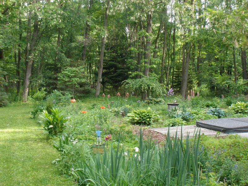 The Backyard Garden